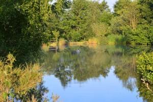 Summer on the lake la chatouillette