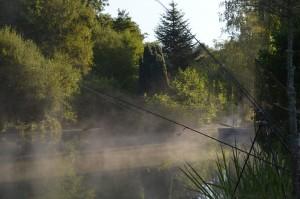 fishing rods ,mist on lake